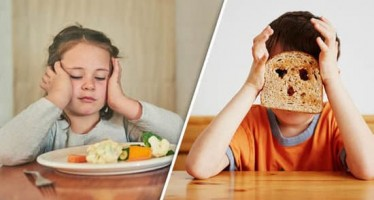 Survey reveals limited support for carers on food behaviour issues among Children in Care